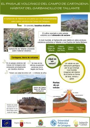 El paisaje volcánico del Campo de Cartagena: El hábitat del Garbancillo de Tallante