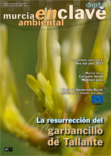 Portada del número 35 de la revista Murcia Enclave Ambiental