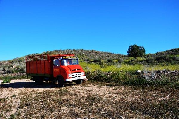 02_El Camión Ebro del año 1967, y con 47 años de edad, con la inscripción del genero Astrágalus en el parasol acompañó durante toda la jornada de grabación del videoclip por el entorno de Tallante