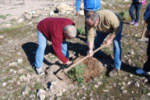 El presidente de la AAVV ayuda a Pedro Jimenez a plantar un individuo de garbancillo